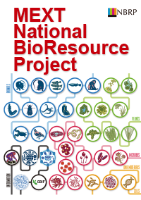 National BioResource Project of Japan