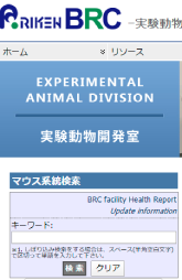 RIKEN BRC実験動物開発室の検索画面の画像